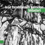 Laar Farobiansah Gamelan 'BIDADARI'